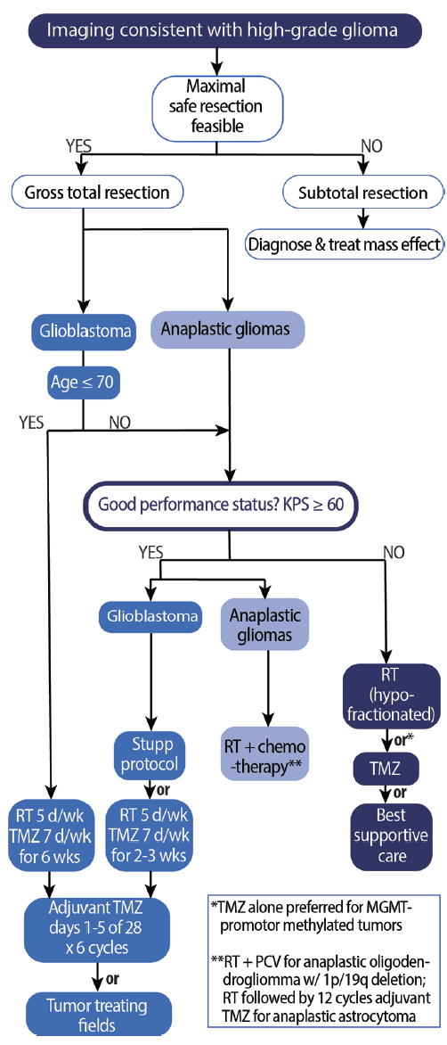 <p>Figure 1. Algorithm for management of high-grade gliomas. Abbreviations: KPS, Karnofsky Performance Status; RT, radiotherapy; PCV, procarbazine, lomustine, and vincristine; TMZ, temozolomide.</p>