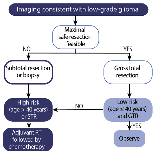 <p>Figure 2. Algorithm for management of low-grade gliomas. Abbreviations: GTR, gross total resection; RT, radiotherapy; STR, subtotal resection.</p>