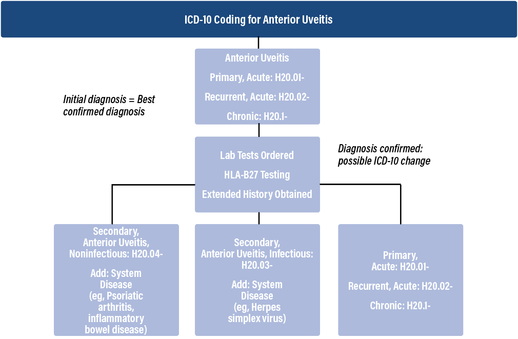 <p>Figure 1. As test results are returned, a more precise diagnosis may be present. Figure adapted from: American Academy of Ophthalmology.</p>