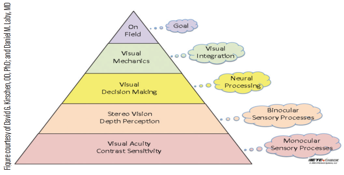 Figure. This vision pyramid can be used in designing a visual training program.