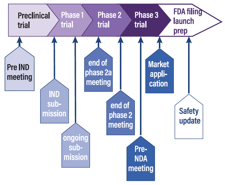 Figure 3. Main episodes of Food and Drug Administration consultation in the drug development process.