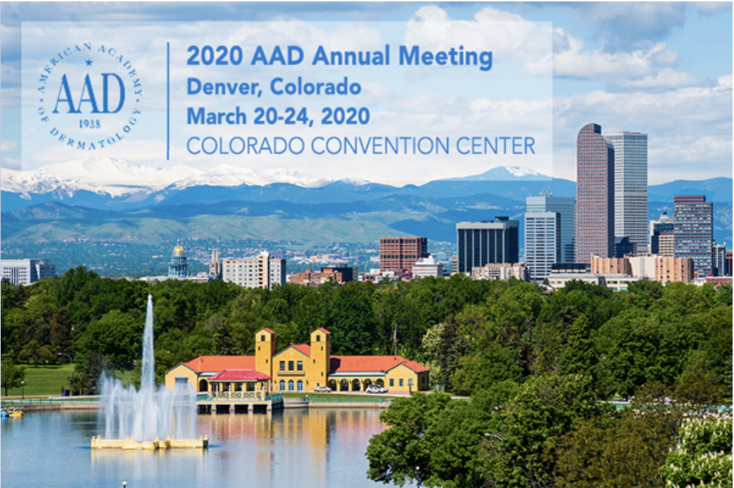 2020 AAD Annual Meeting image