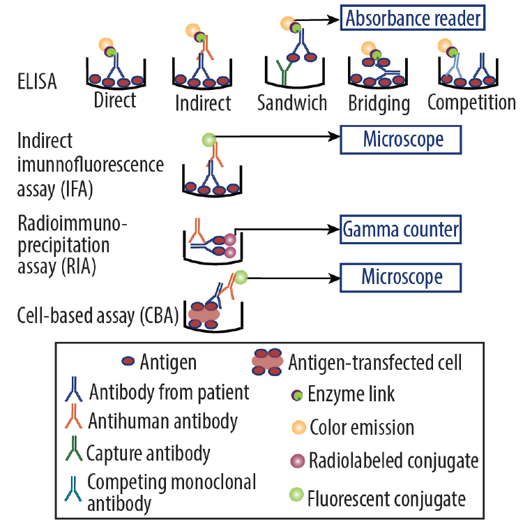 <p>Figure 1. Commonly used immunoassays. Abbreviations: ELISA, enzyme-linked immunosorbent assay.</p>