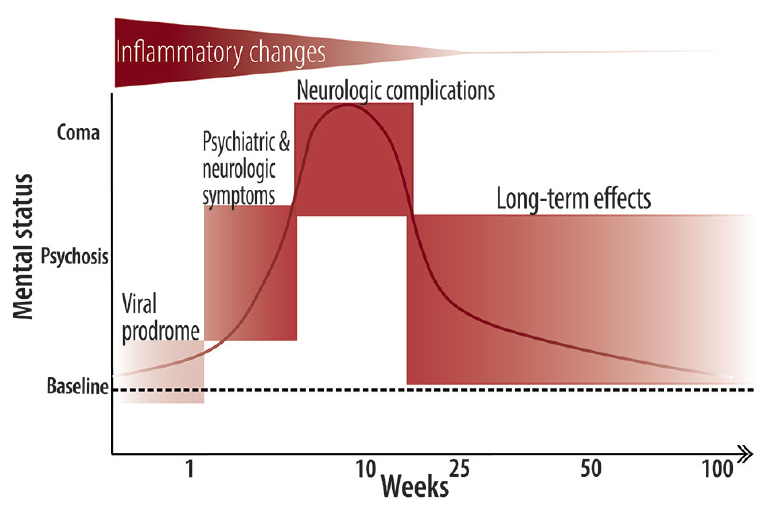 <p>Figure. Stages of Anti-N-methyl-D-aspartate receptor encephalitis. A viral prodrome lasting approximately 1 week is followed by psychiatric and neurologic symptoms including delusions, hallucinations, mania, agitation, speech changes, disorganized thinking, catatonia, and often, seizures. Movement abnormalities, worsening seizure, dysautonomia, and coma typically ensue and can last for weeks to months. Eventually, a long recovery begins, which takes months to years, and often includes persistent neurologic deficits (eg, executive dysfunction, impulsivity, disinhibition, and sleep abnormalities).</p>