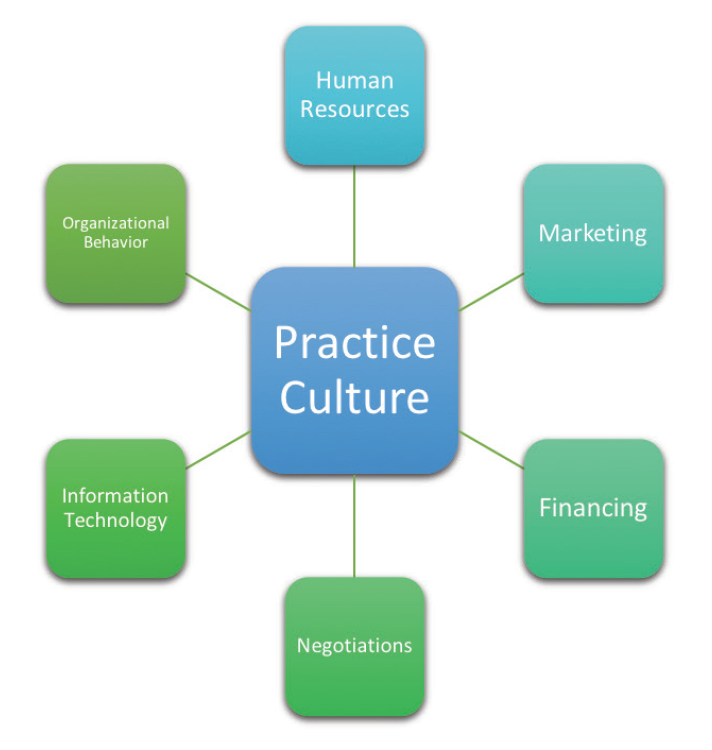 <p>Figure. Various aspects of a business funnel back to its guiding principles, which are dictated by the practice culture.</p>