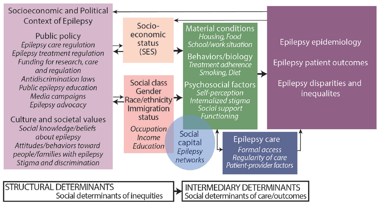 Figure. The social determinants of health framework applied to epilepsy.